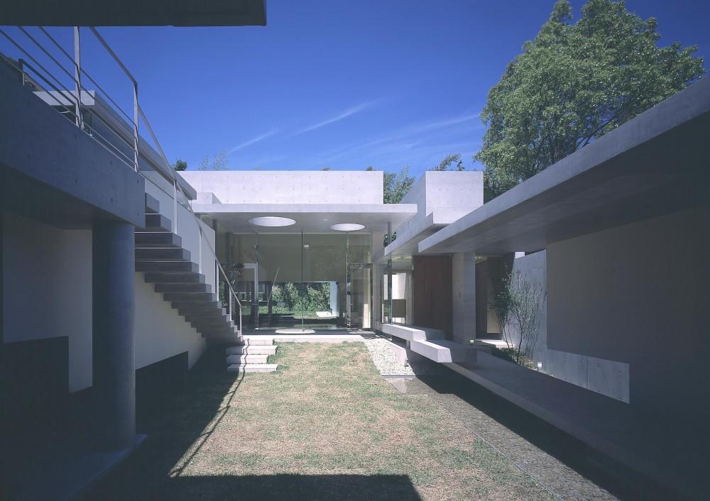 長田町の住宅 (中庭よりリビング方向を見る)