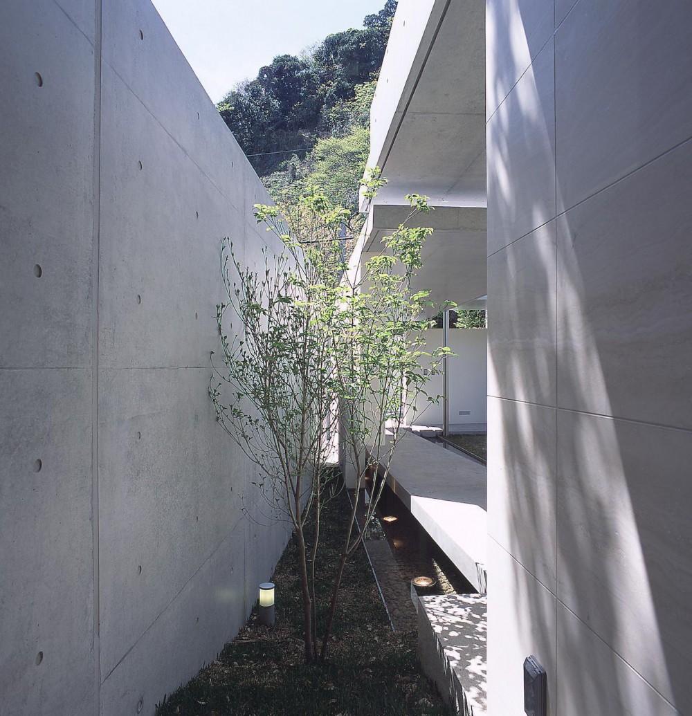 長田町の住宅 (玄関ホールよりアプローチ脇の坪庭を見る)