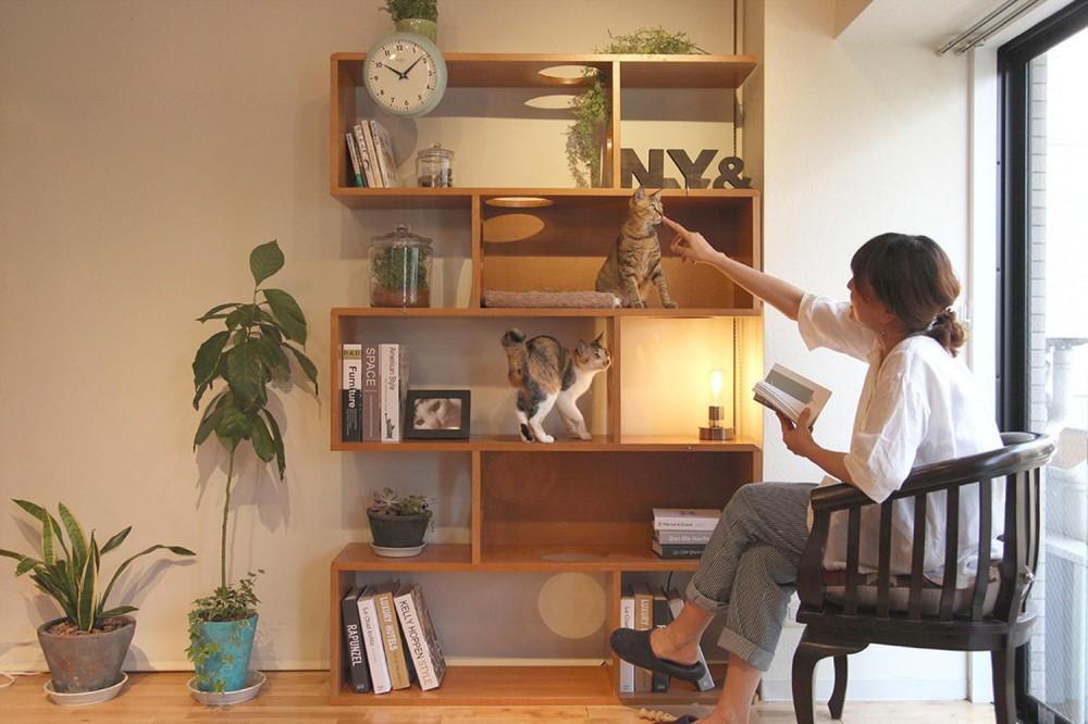 畑山慶「NY&〜部屋に新しいスペースを生む、人と猫のための家具ニャンド〜」
