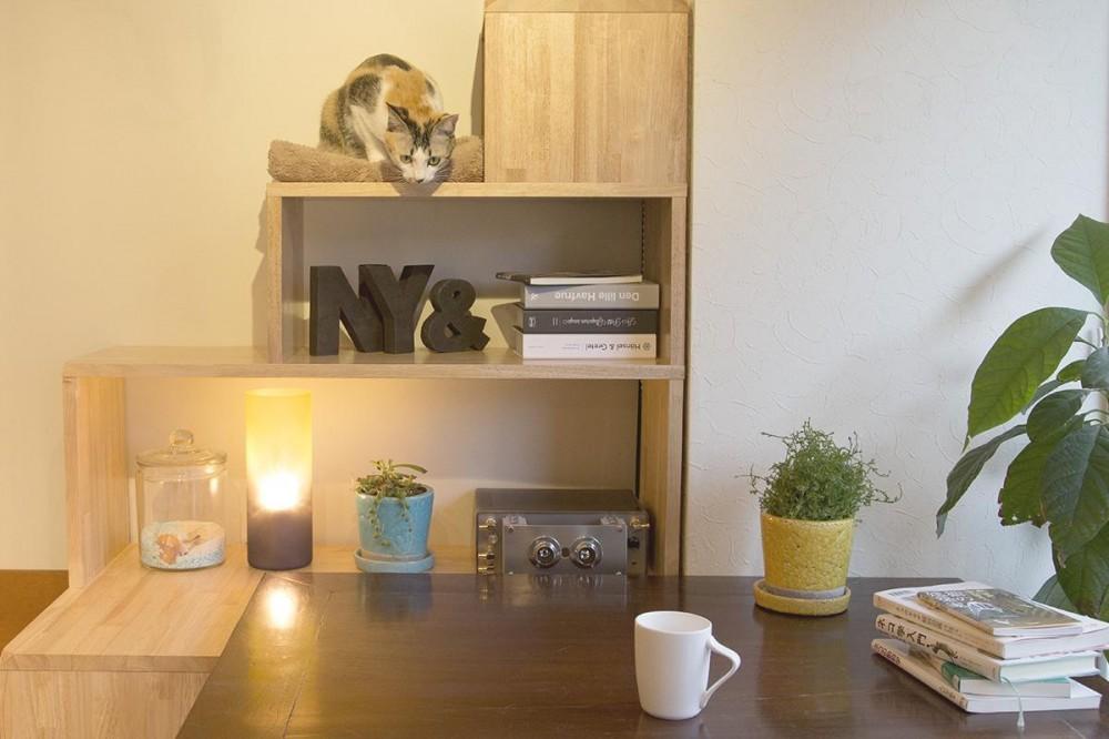 NY&〜部屋に新しいスペースを生む、人と猫のための家具ニャンド〜 (猫とたくさん触れ合えるニャンド)