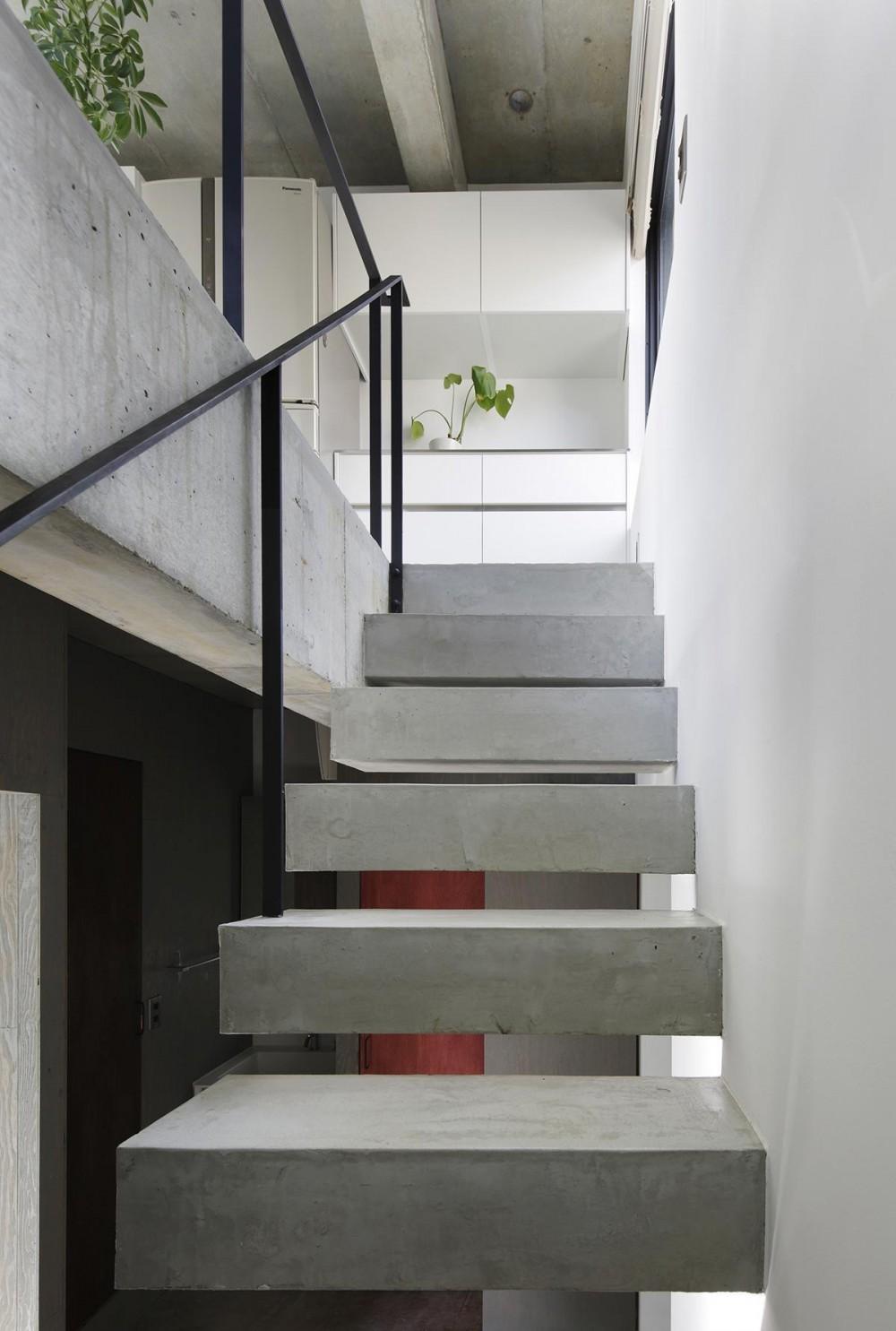 恵比寿の家 (階段)