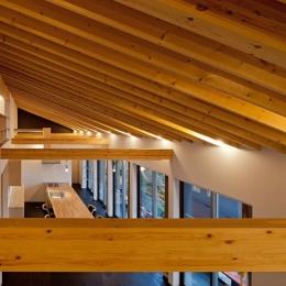 (B棟)垂木の連続性がモダン感覚の木造空間を生み出す