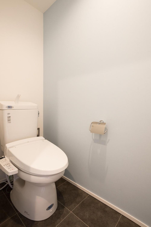 白を基調とした爽やかな空間 (WC)
