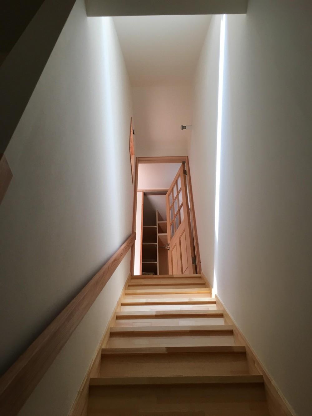 柏ボックス (階段)
