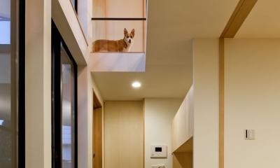 まわる家/愛犬目線でつくる家 (玄関の土間空間.2階から愛犬がお迎えしてくれます.)