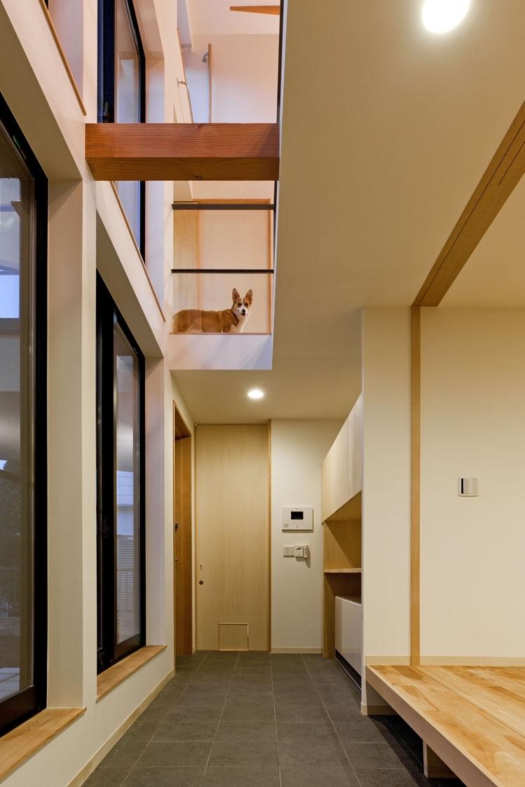 まわる家/愛犬目線でつくる家の部屋 玄関の土間空間.2階から愛犬がお迎えしてくれます.