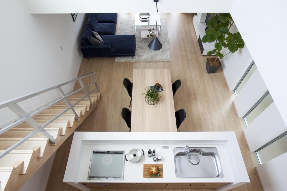Depth Modern House (キッチン)