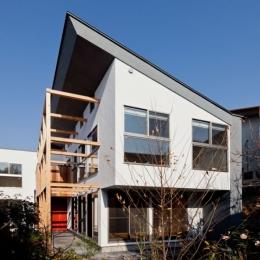 木格子の家/石神井台の二世帯住宅 (庭からみた外観)