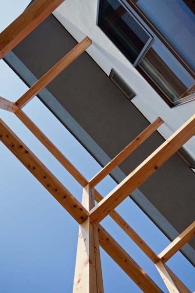 木格子の家/石神井台の二世帯住宅 (不燃木材による木格子見上げ)