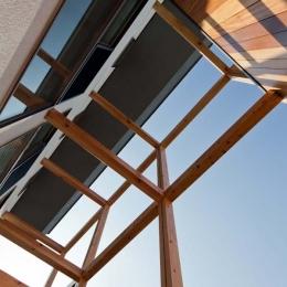 木格子の家/石神井台の二世帯住宅 (木格子の見上げ)