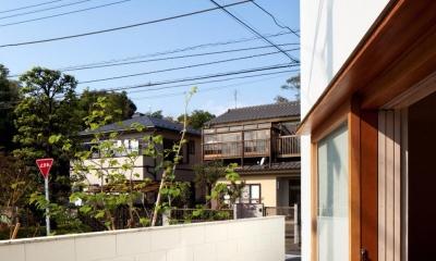 南沢の小住宅 (テラス)