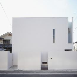WHITE   BOX-外観