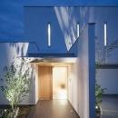 WHITE COURT HOUSEの写真 夜景