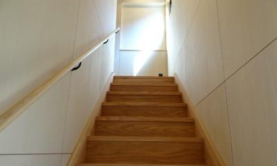犬と暮らす家―人とワンコが共に快適に暮らせる家― (階段室)