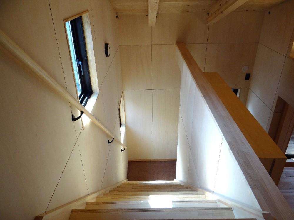 犬と暮らす家―人とワンコが共に快適に暮らせる家― (ロフト階段)