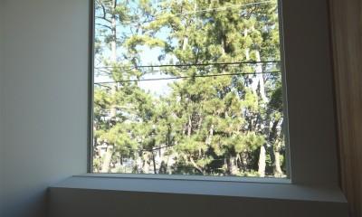 車と暮らす家―大好きな車たちに囲まれながら日常を離れてくつろぐ為のガレージハウス― (階段ホール)