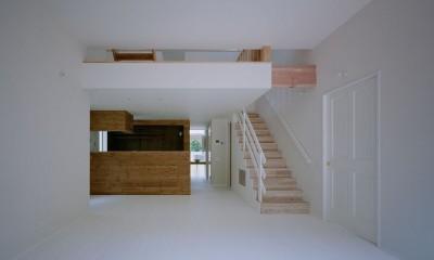 高浜台の家 (キッチン)