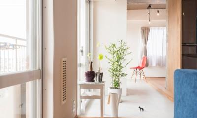 マンションの部屋の中のテラス|ぜいたくカジュアルな家