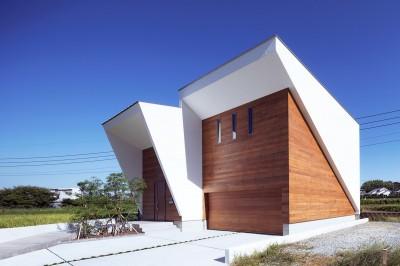 I6-house「木漏れ日のある家」 (外観1)