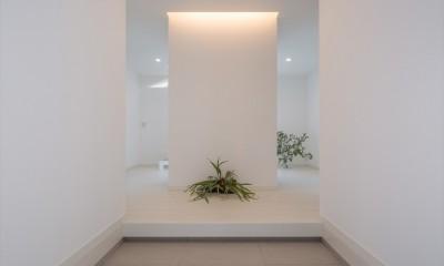 眺望を楽しみ穏やかに暮らす家 (玄関ホール)
