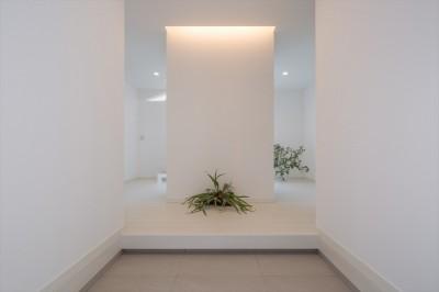 玄関ホール (眺望を楽しみ穏やかに暮らす家)