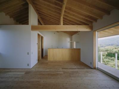 キッチン (半島の家)