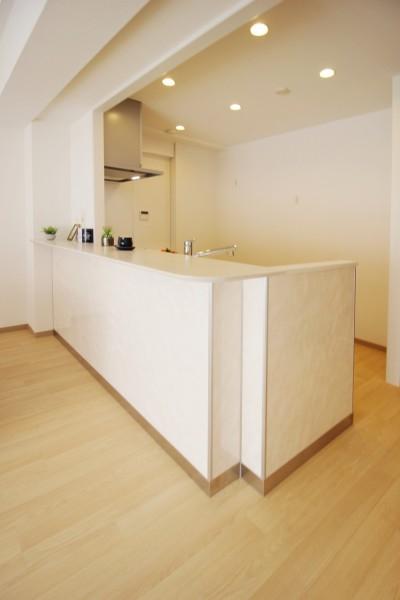 稲沢リノベーションマンション (キッチン)