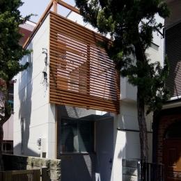新宿区百人町の家(敷地12坪の家) (木のスクリーンが密集地にささやかな潤いを与えます)
