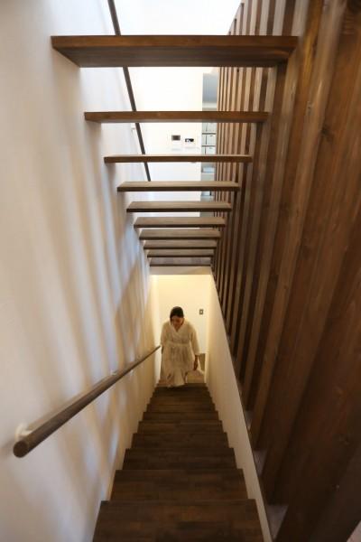 階段 (余白の家)