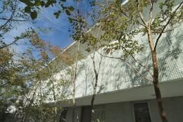 kirishima-no-ie   屋根も壁も、コンクリート打放しの仕上げです。 (外観(南面庭))