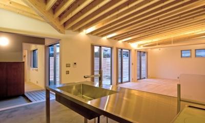 住宅地に建つコートハウス(通り抜け土間のある家) (シンプルさを追求したステンレス製のキッチン)
