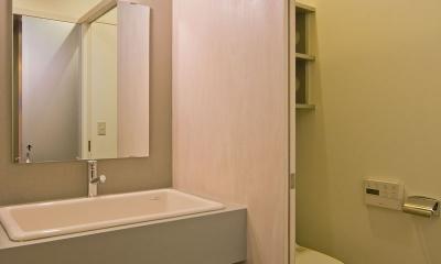 住宅地に建つコートハウス(通り抜け土間のある家) (学校用の実験流しを採用した洗面スペース)