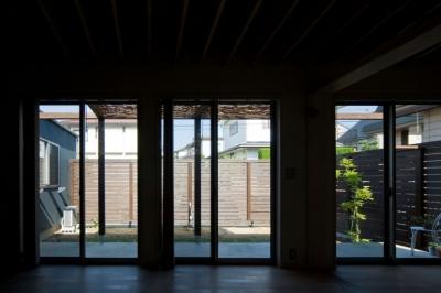 住宅地に建つコートハウス(通り抜け土間のある家) (リビングから庭(コート)を見る)