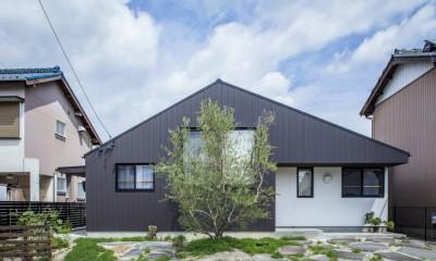 オリーブの木と土間玄関の家