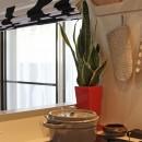 猫と暮らす、二世帯住宅(成城学園前 戸建てリノベーション)の写真 キッチン(1階)