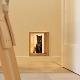 猫と暮らす、二世帯住宅(成城学園前 戸建てリノベーション) (ペット用通路(1階))