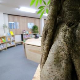 OFFICE WOLISU~16名で囲む大テーブル~ (木の幹より)