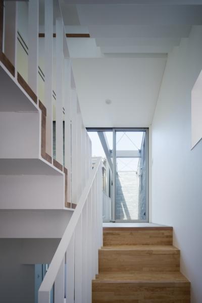 階段 (桑津の家)