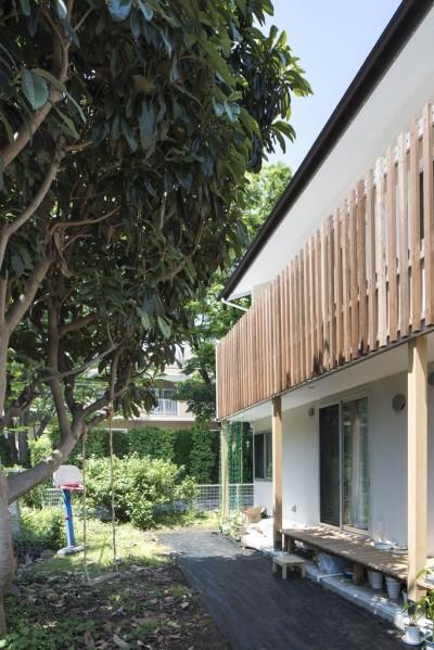 緑が繋ぐ二世帯の家 (庭・縁側)