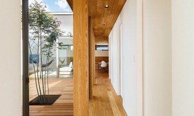haus-flow/地域のオアシスとしての平屋中庭付き住宅 (haus-flow 廊下)