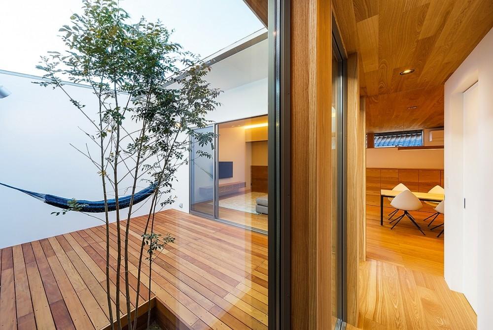 haus-flow/地域のオアシスとしての平屋中庭付き住宅 (haus-flow 廊下&中庭)