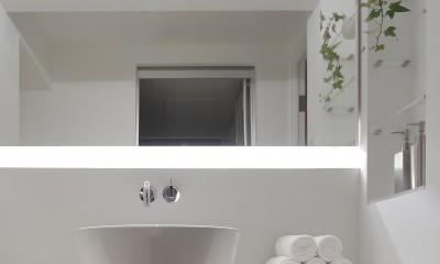 阿倍野の住宅 (洗面)