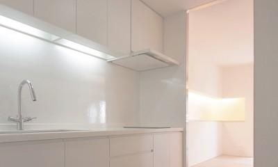 阿倍野の住宅 (キッチン)