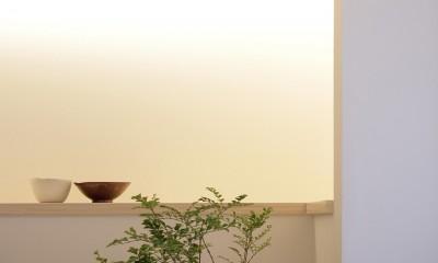 阿倍野の住宅 (カウンター)