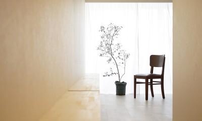 恵美須のゲストハウス (カウンター)