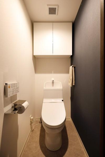 トイレ (一見シンプルな住まいながら、来客には見えないオシャレにもこだわった家。)