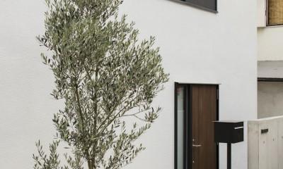 アプローチ|ハコノオウチ10 大窓の家