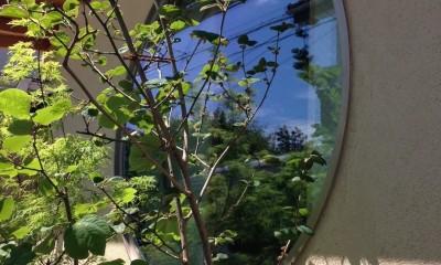 植栽と丸窓|結 〜丸窓のある木の家〜