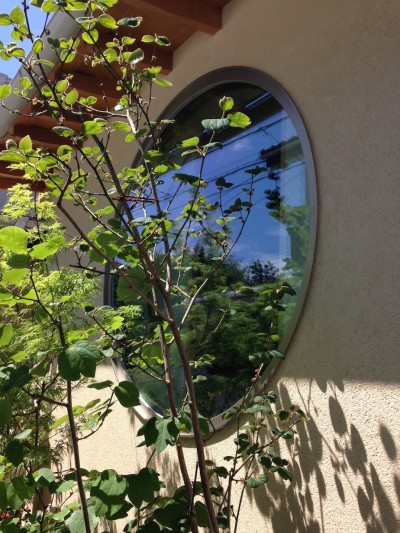 植栽と丸窓 (結 〜丸窓のある木の家〜)