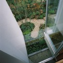 ミッドセンチュリーテイスト 成城にてゆったりと住まうの写真 上階から見下ろした坪庭の様子
